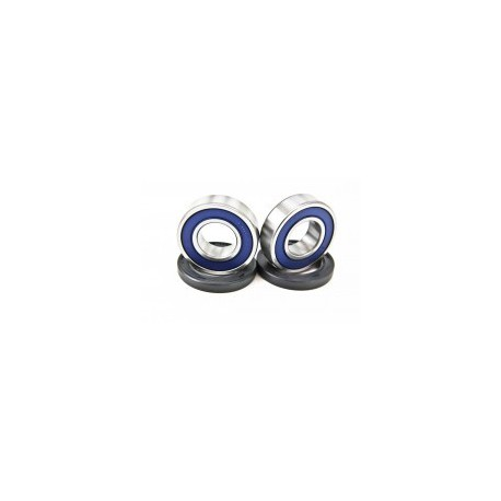All Balls Aslagers Suzuki LTR 450